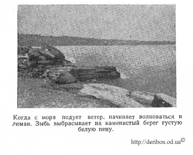 Фото 1892 год, берег Хаджибея, белая пена у берега, сильный ветер и волнение